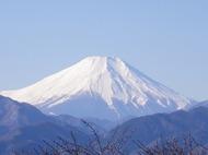 高尾山山頂から富士山が見えました!