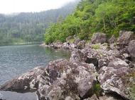 北八ケ岳の飲める池 双子池の雄池