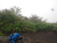 榛名山(榛名富士、掃部ヶ岳)を登ってきました!