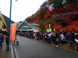 残雪残る6号路。髙尾山には、もみじ祭りの太鼓が鳴り響く