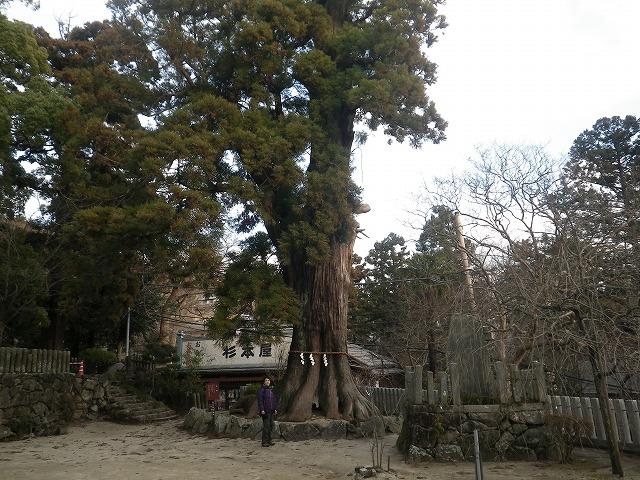 筑波山神社駐車場から登山、男体山⇒女体山⇒ロープウェイで下山