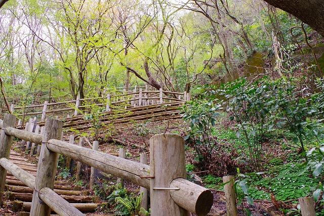 筑波山 薬王院コース 階段