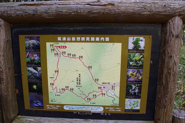筑波山 自然研究路