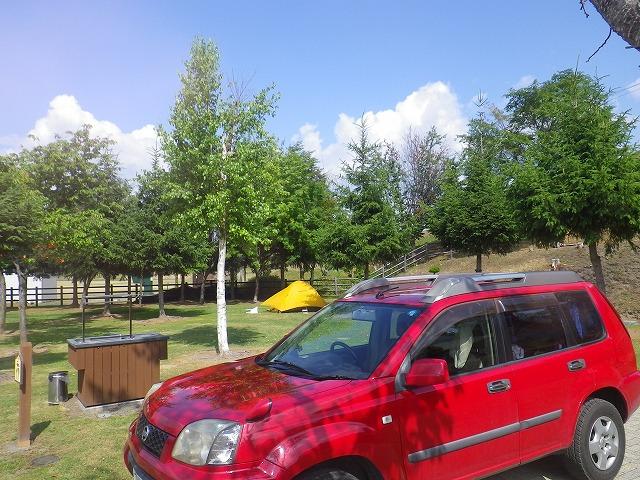日の出公園オートキャンプ場の個別テントサイト