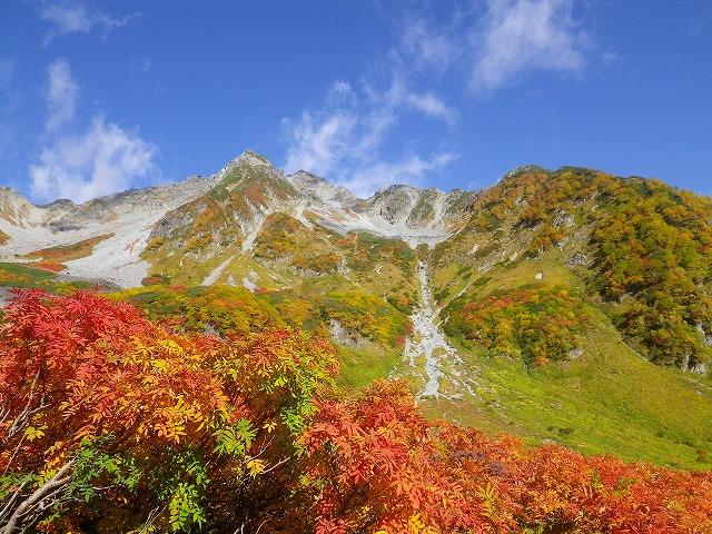 涸沢の紅葉