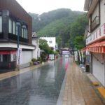 7月頭(まだ梅雨)の高尾山を登ってきました(^^)