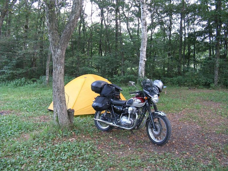 山間部のキャンプ場 フリーサイト