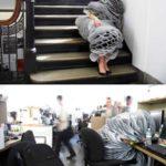 オフィスに最適!?スーツ寝袋
